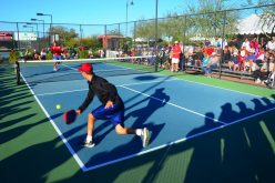 Different types of equipment for Pickleball