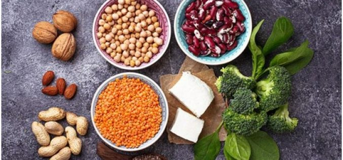 The 10 Best Plant Based Proteins to Include in Your Diet