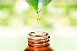 The Pros and Cons of Essential Oils