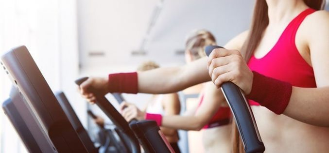 Offer services in a splendid manner to fitness seekers